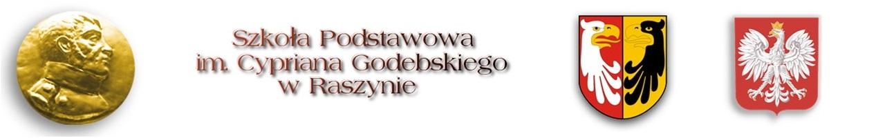 spraszyn.pl
